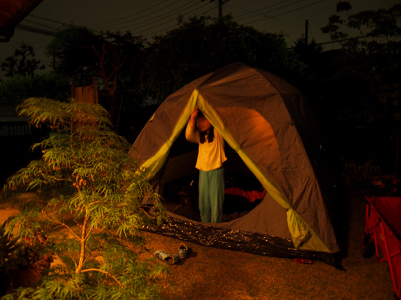 Night Camp in the garden