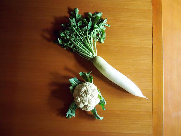 冬野菜の顔