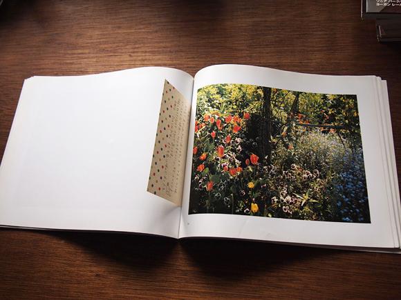 庭の写真集