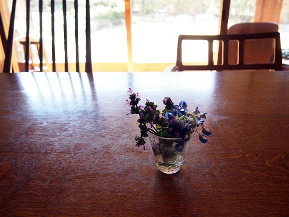 素顔の草花