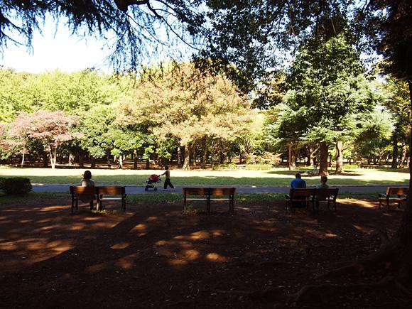 autumn_park001.jpg