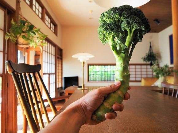 broccoli0002.JPG