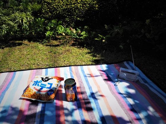 garden_picnic0005.JPG