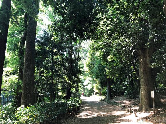 inokashira_park002.jpg