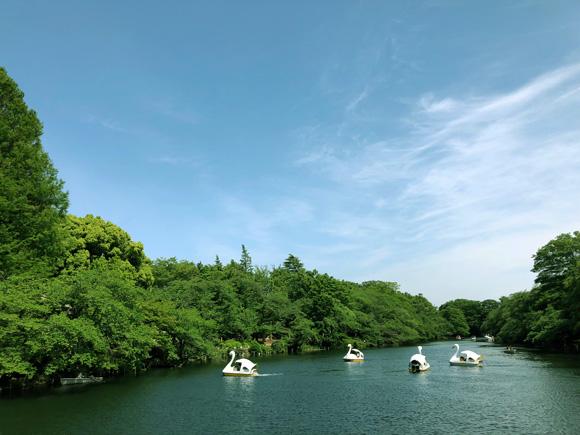 inokashira_park004.jpg