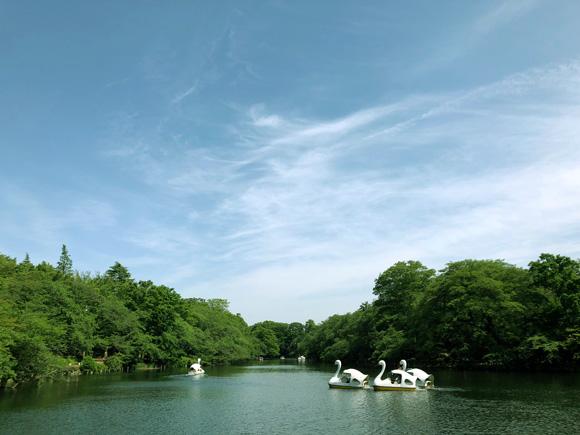 inokashira_park005.jpg