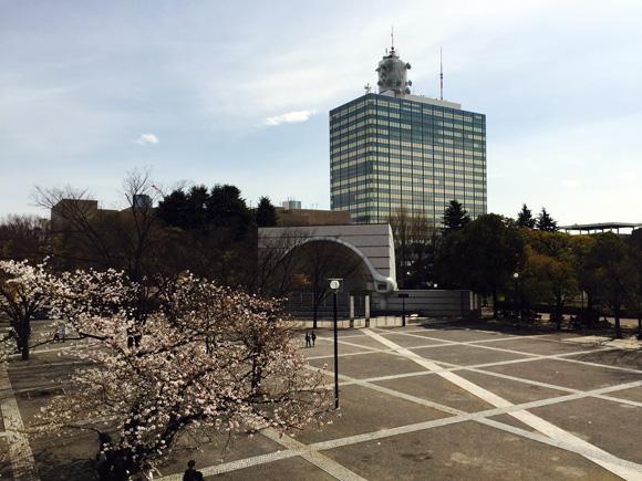 代々木公園と桜と音楽