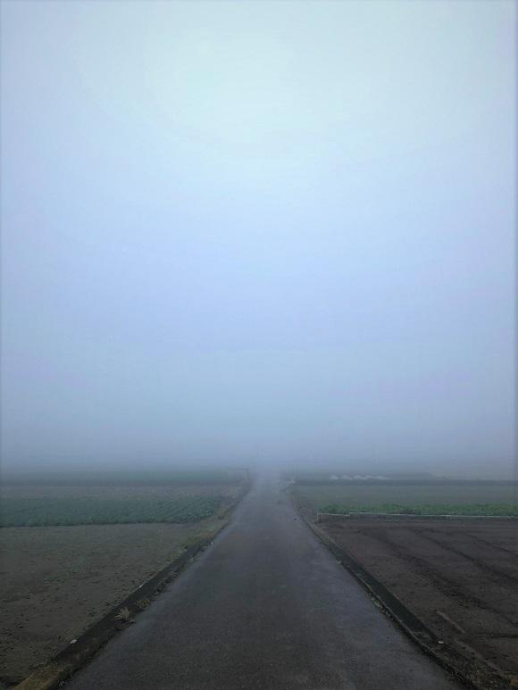 misty_morning005.jpg