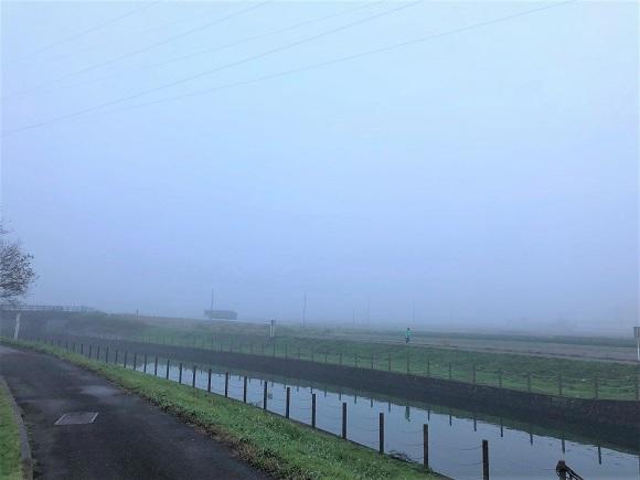 misty_morning007.jpg