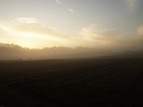 morning_fog001.jpg