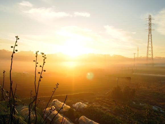 morning_fog007.jpg