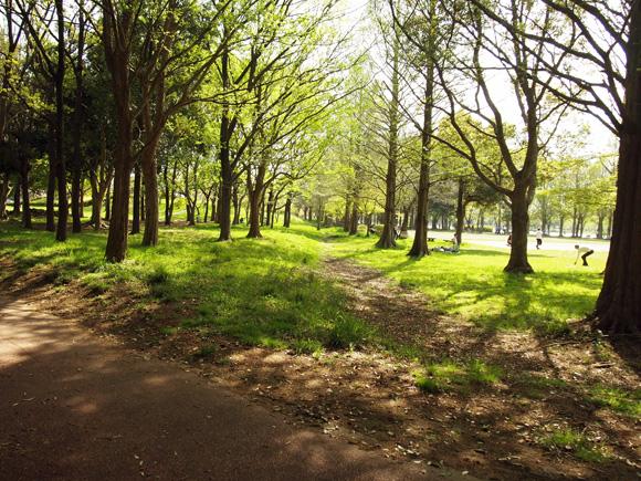 nagoya_picnic001.jpg