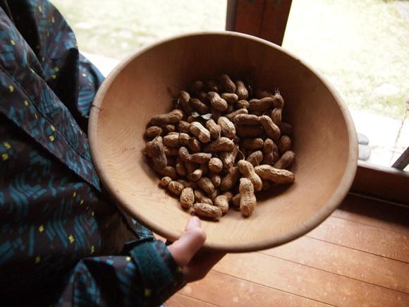 peanuts003.jpg