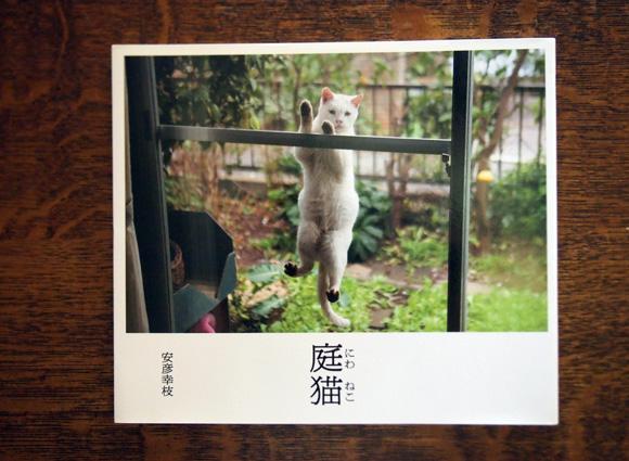 shonantsutaya_25.jpg