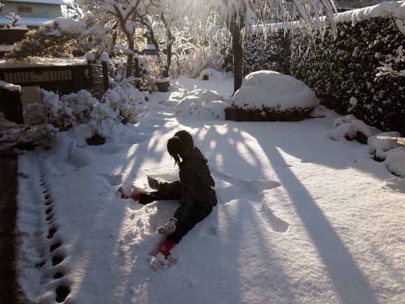 snow_woods003.jpg