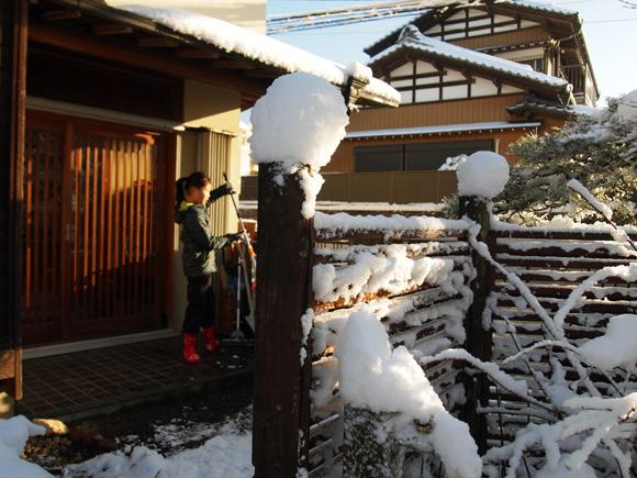 snow_woods004.jpg