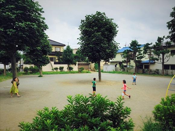 summer_ph006.jpg