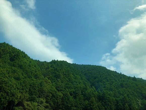 toyota_green001.jpg
